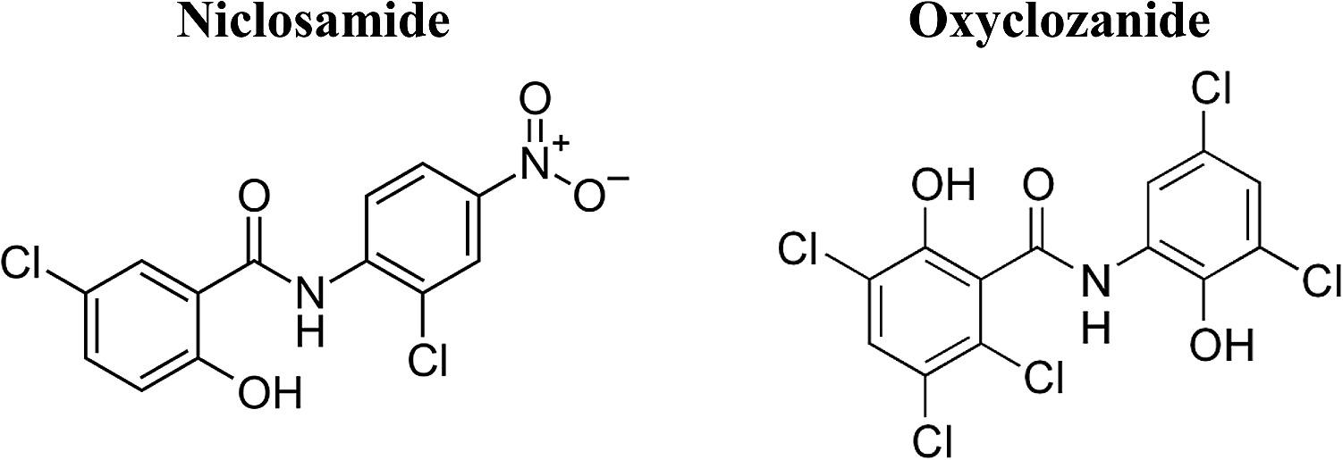 Antibiotic - Wikiwand