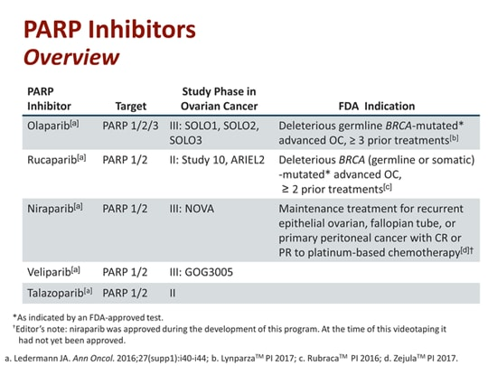 ovarian cancer parp inhibitors)
