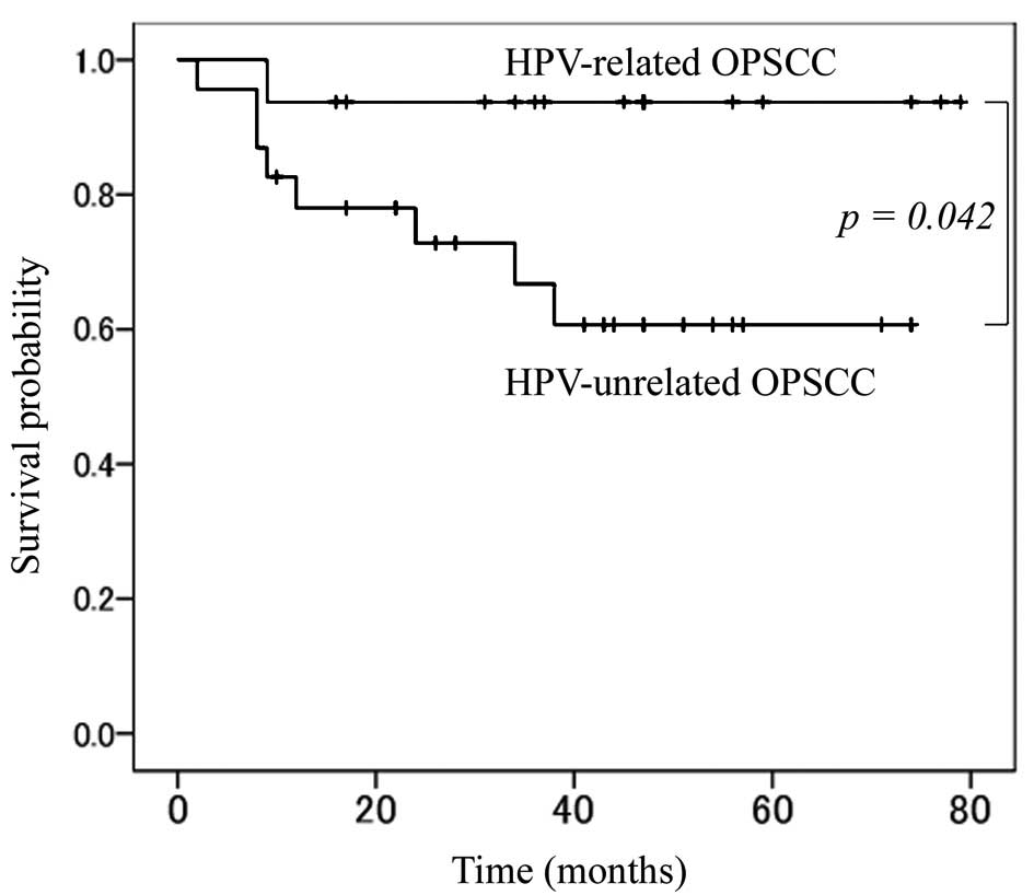 tonsil cancer hpv survival rates)