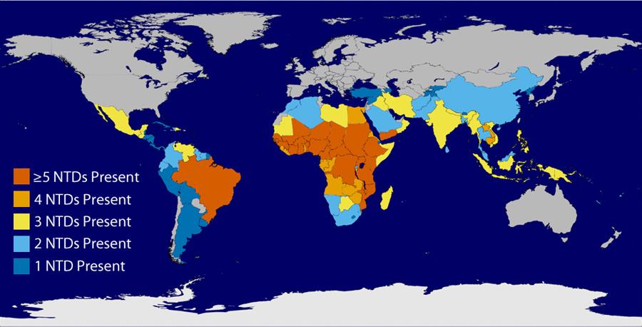 schistosomiasis contagious)