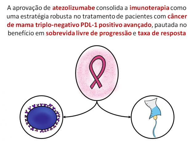 10 lucuri pe care trebuie să le știm despre imunoterapia în cancer – Paula Rusu