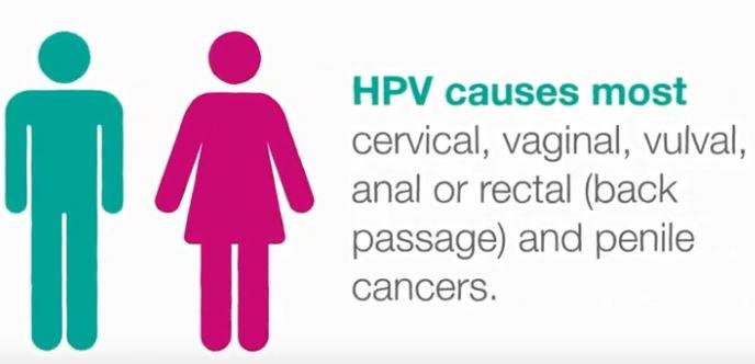 hpv virus romana