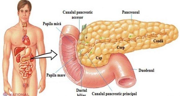 detoxifiere pentru pancreas)