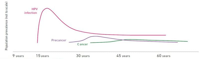 correlation hpv cervical cancer