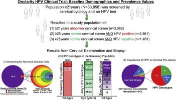 research into papillomavirus