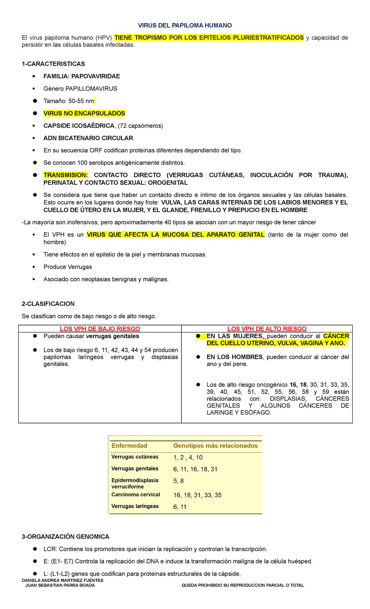papiloma humano caracteristicas de la enfermedad ciuperci yurta