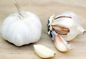 hpv warts garlic