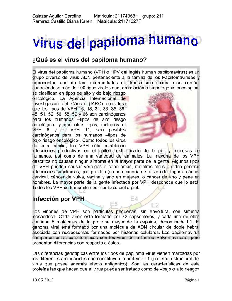 caracteristicas del virus del papiloma humano