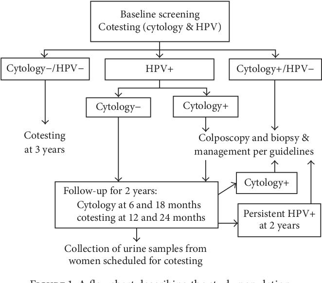 cervical high risk human papillomavirus dna test)