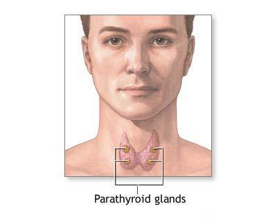 cancer tiroida barbati)