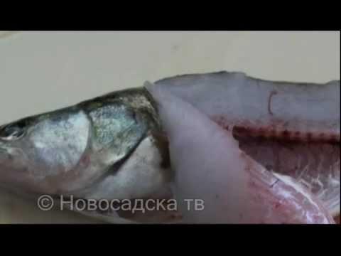 Hemoliza opisthorhiasis