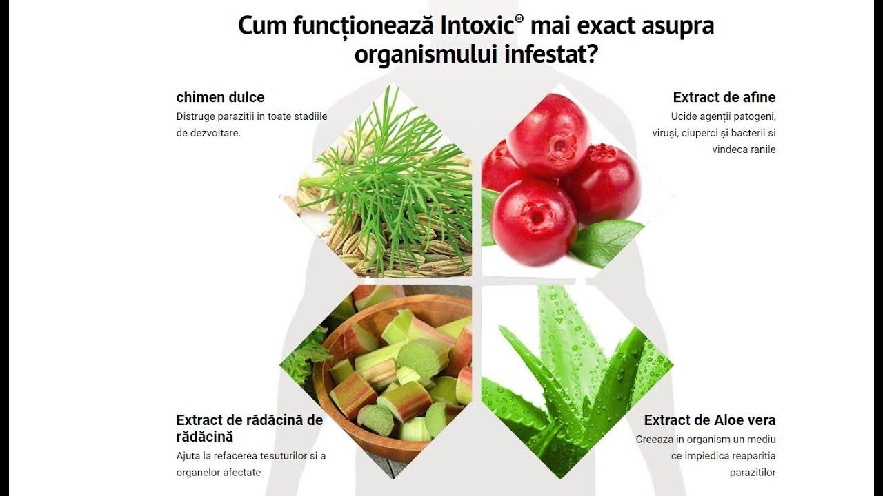 elimina parazitii din corp)