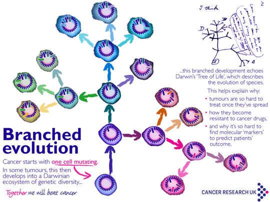 cancer and genetic research