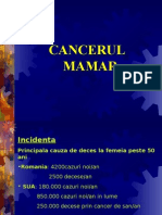 Cancerul de san - factori de risc, analize si diagnostic, tratament