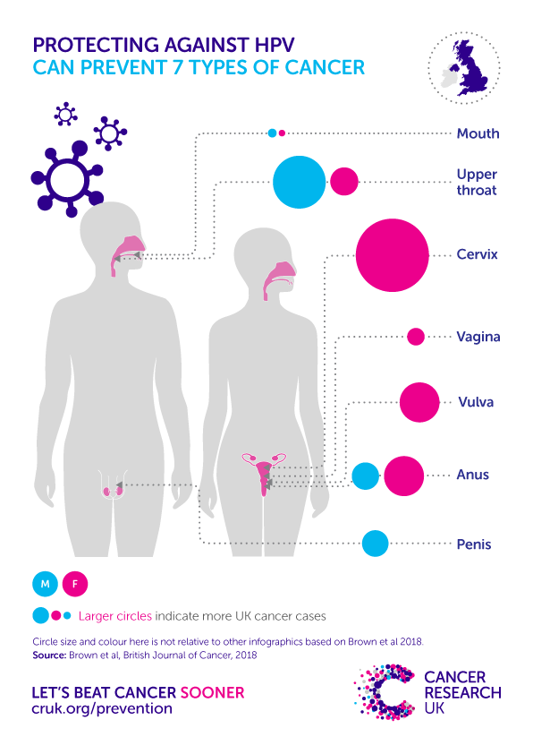 hpv causes what cancer in males)