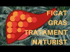 dezintoxicarea ficatului gras