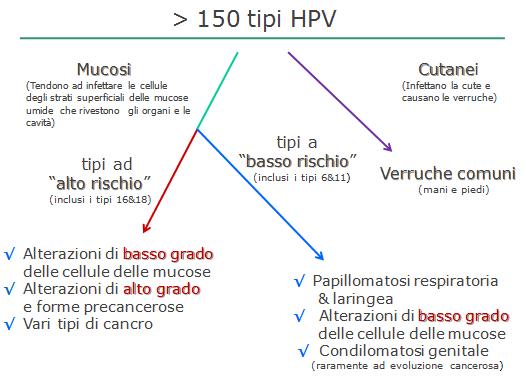 hpv ad alto e basso rischio)