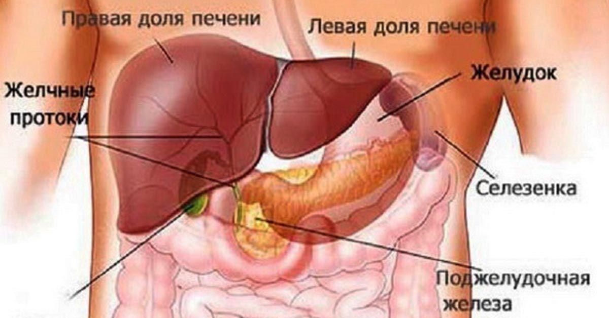 hpv virus prirodna liecba)