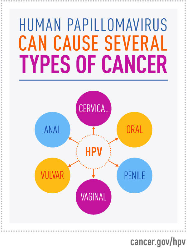 warts and cervical cancer is caused by which virus)