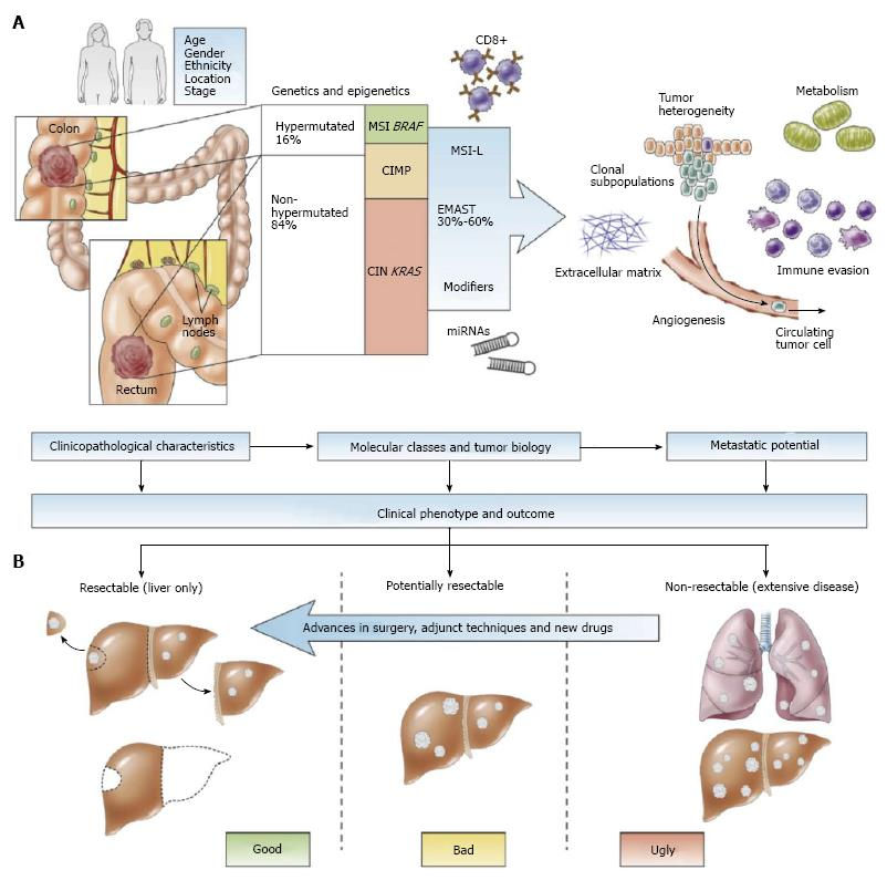 colorectal cancer liver metastases anthelmintic drugs uses