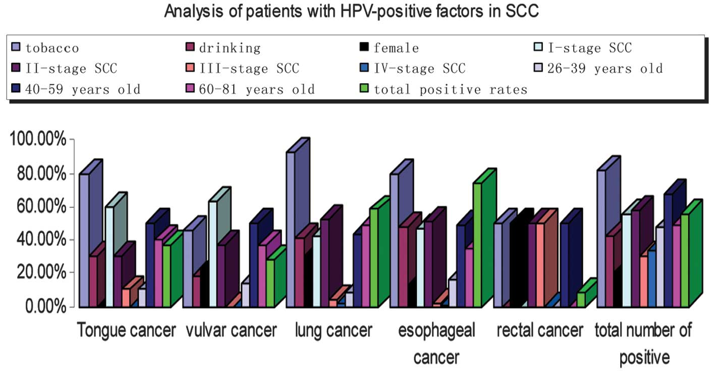 hpv positive esophageal cancer)