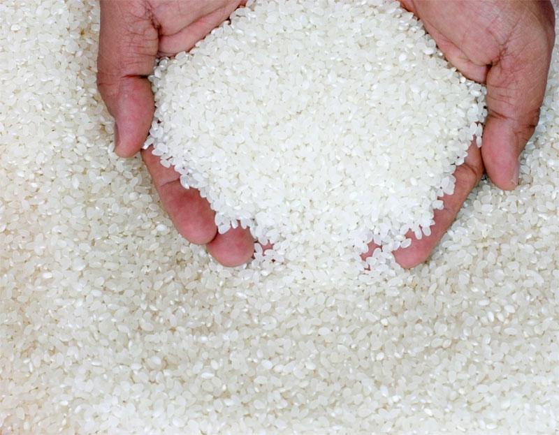 orez pentru detoxifiere