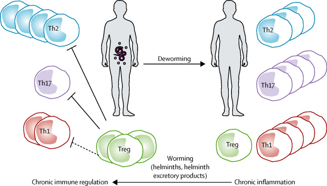 helminthic therapy eczema)