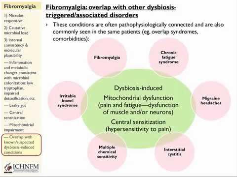 dysbiosis pain