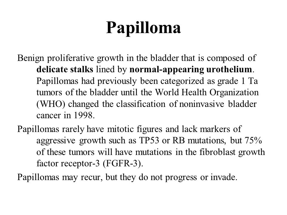 papillomas in the bladder