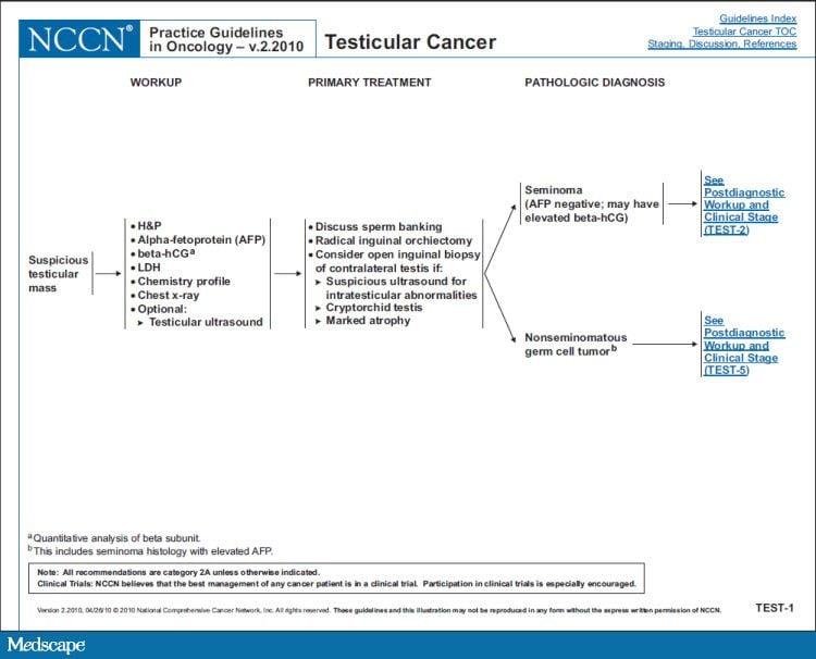 testicular cancer nccn guidelines)