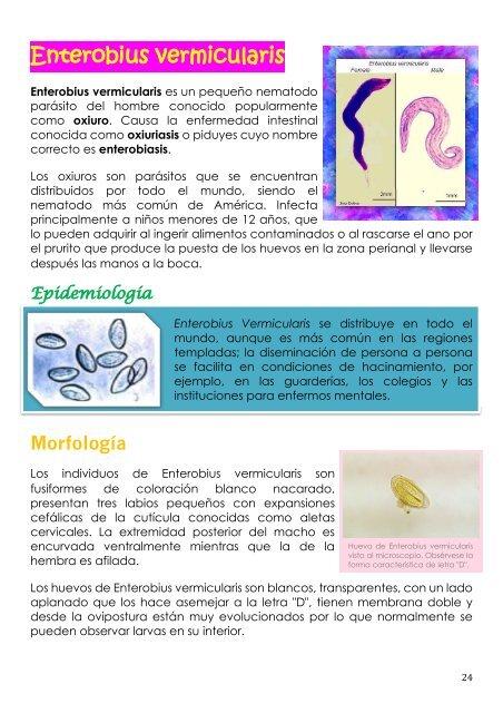 enterobiasis enfermedad que produce)