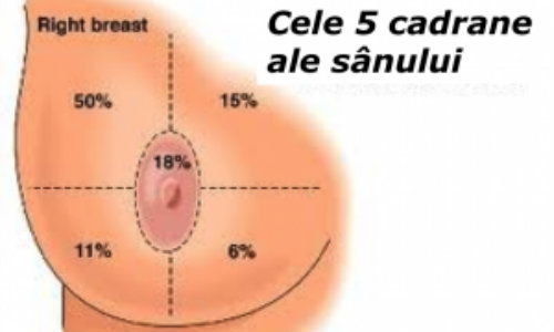 simptome cancer san femei)