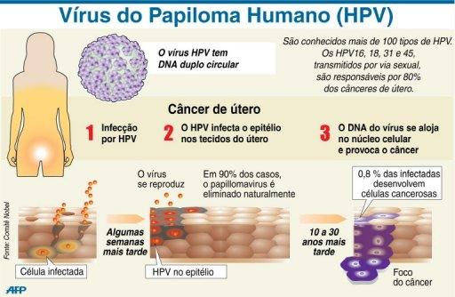 virus papiloma humano hpv)