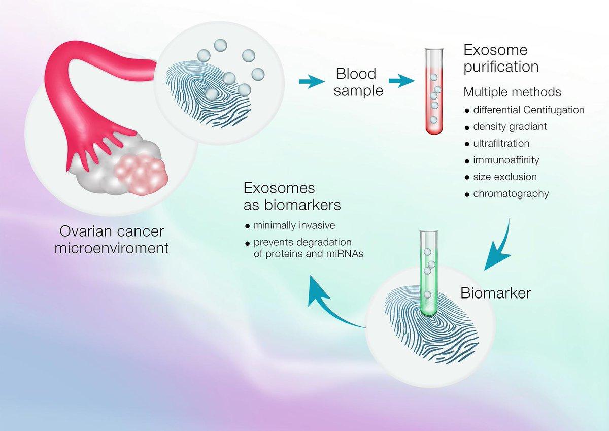 ovarian cancer ncbi