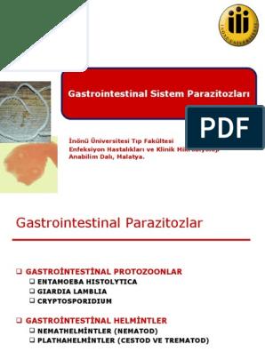 gastrointestinal parazit enfeksiyonlar?)