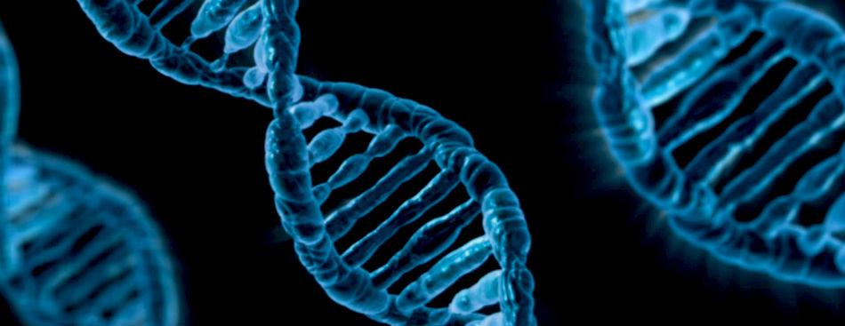 cancer cauze genetice condylomata acuminata folder