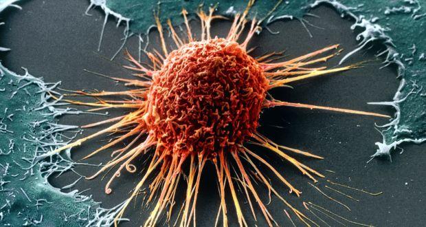 virus papiloma humano deteccion hombres
