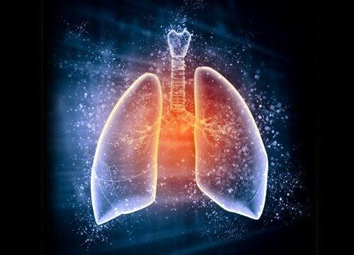 Reteta care curata plamanii in trei zile, chiar daca ai fumat mai mult de cinci ani - Revista Teo