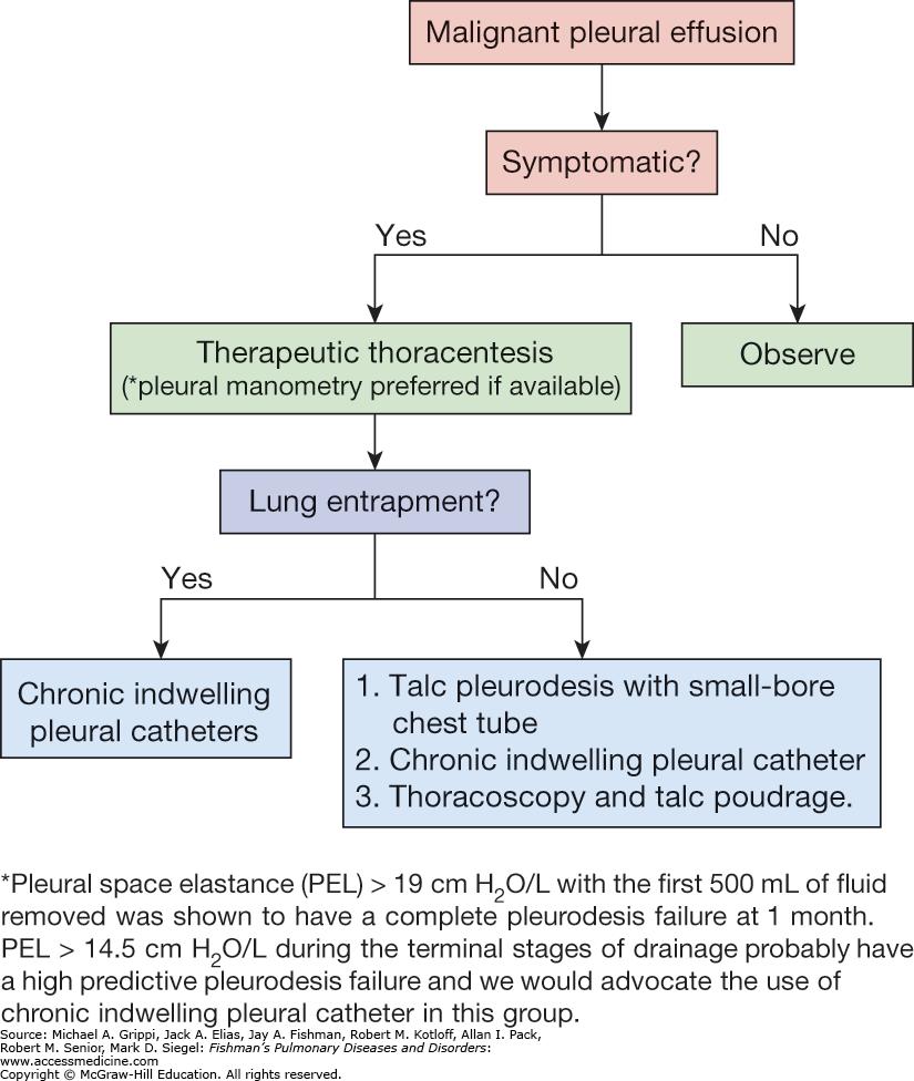 lung cancer benign pleural effusion hpv causes disease