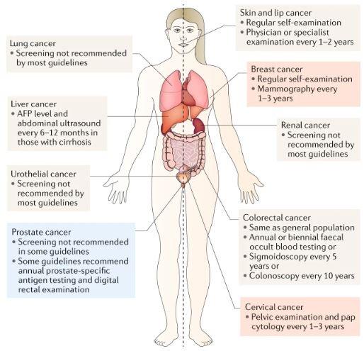 papillary thyroid cancer fap