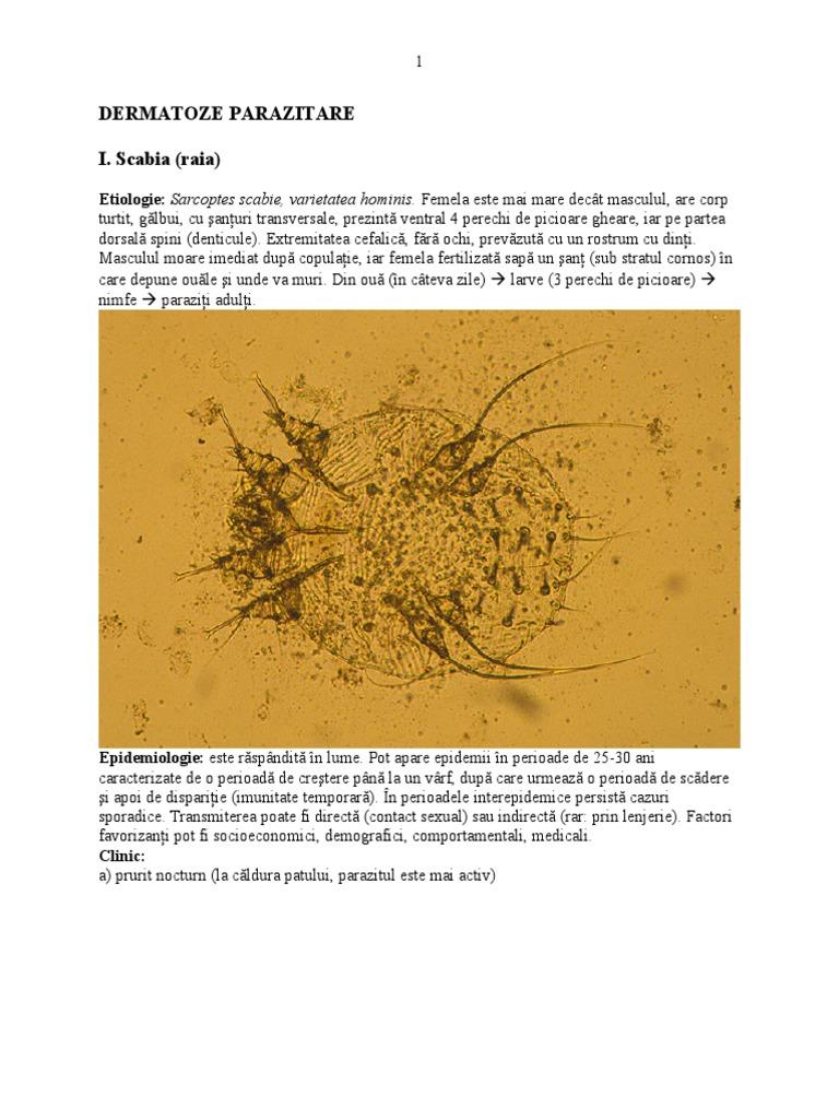 leziuni parazitare