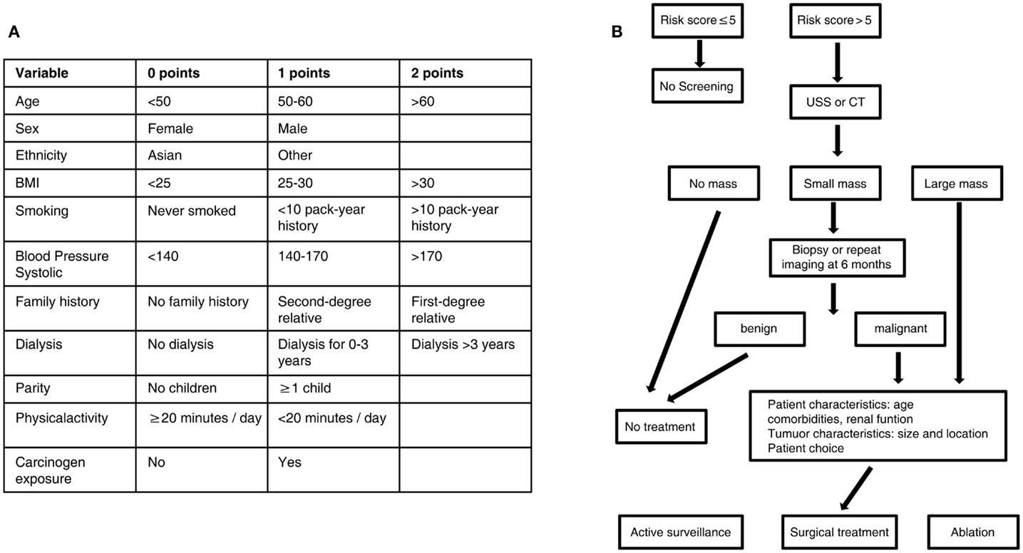 Tumor M2 PK (izoenzima M2 piruvatkinaza) în plasmă | Synevo