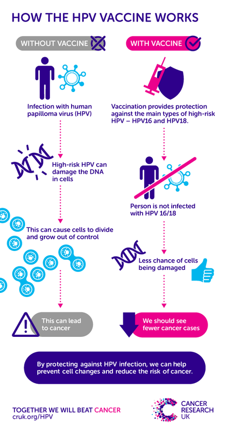 hpv vaccine leads to cancer)