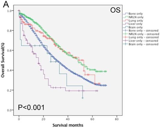 metastatic cancer brain survival rate)