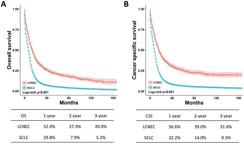 neuroendocrine cancer death