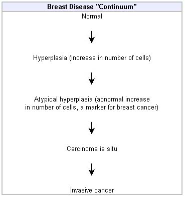 breast cancer hormone results