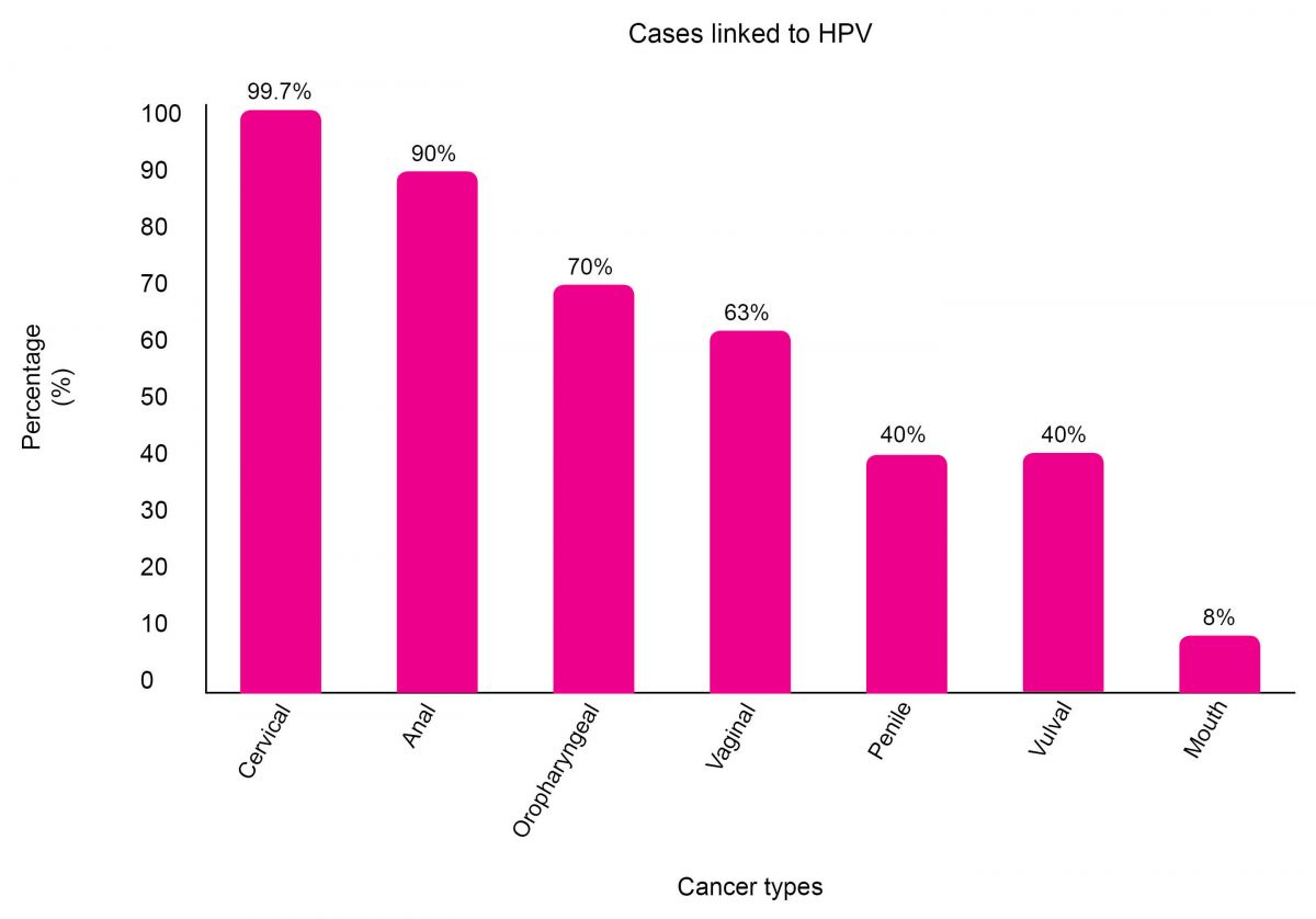 hpv risk of cervical cancer)