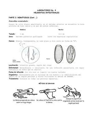 enterobius vermicularis u oxiuros tratamiento