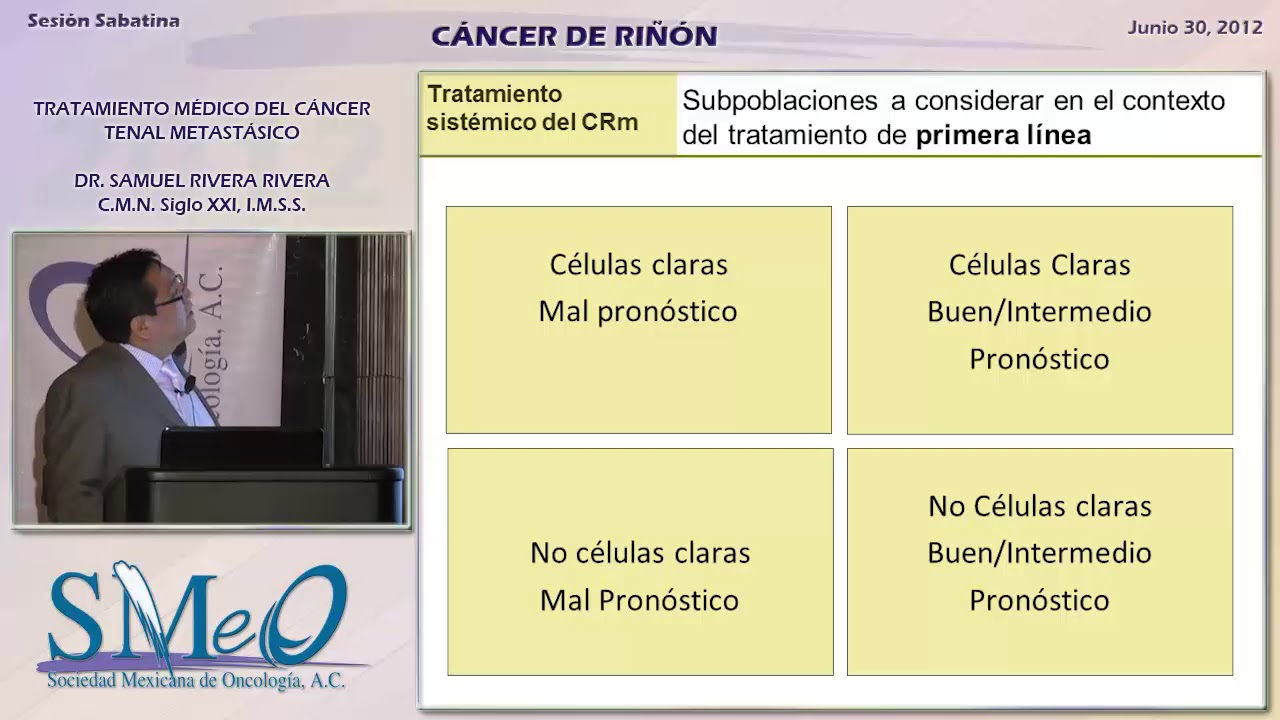 cancer renal tratamiento)