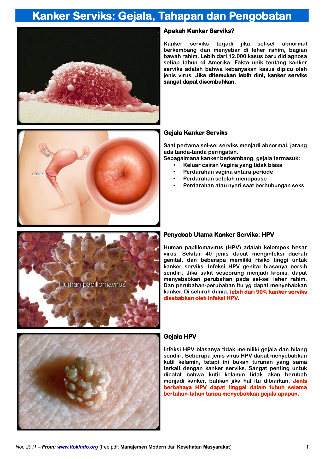 human papilloma virus menyebabkan)